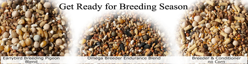 breeding-season