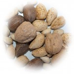 In Shell Mixed Nuts